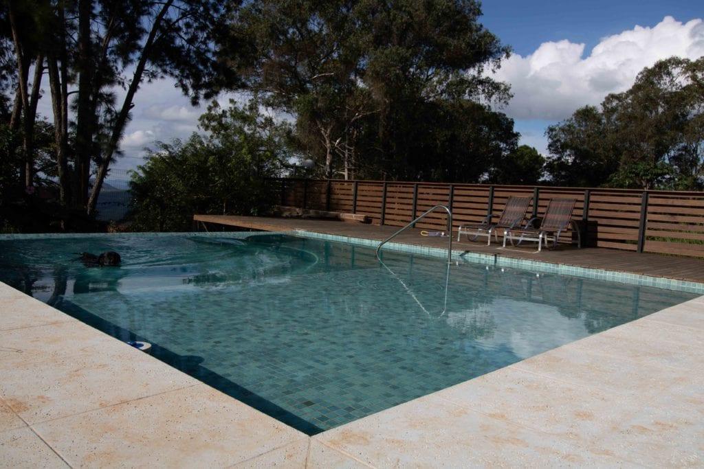 Pool mit Zaun abgesichert und Hund schwimmt darin